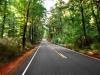 road_fb