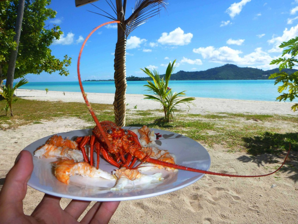 lobster1 1024x768 Bora Bora. The Pearl of The Pacific